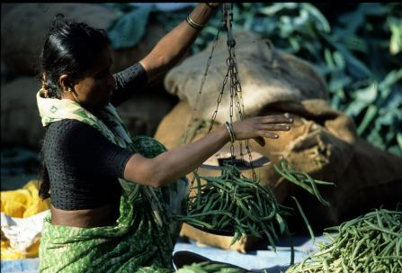 Woman weighing green beans in Karwa, Karnataka, India (photo by Naomi Duguid)