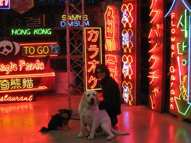 Lisa Schulte and canine friends at her company Nights of Neon (photo courtesy of Lisa Schulte)